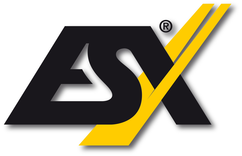 ESX Car Audio System